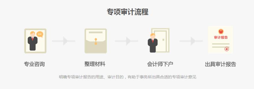 专项审计流程.jpg